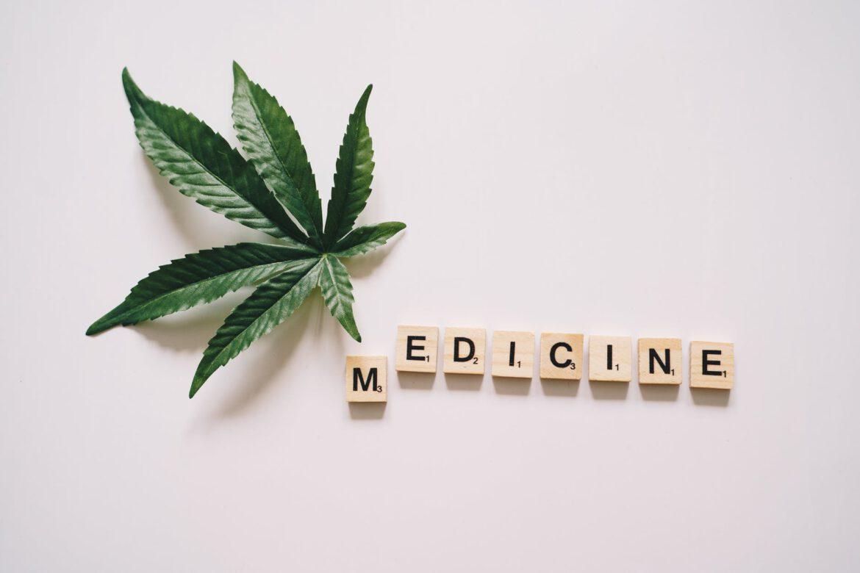 Marihuana lecznicza substancją stosowaną w medycynie XXI wieku